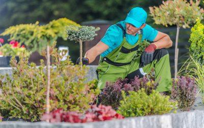 Férias parceladas: seu jardineiro pode parcelar o descanso?